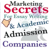 essay writing for marketing companies